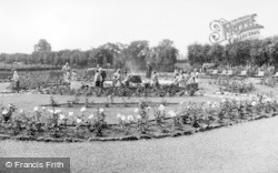 Chester Zoo, The Rose Garden c.1950