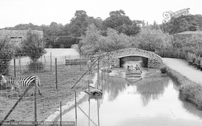 Photo of Chester Zoo, The Waterways c.1955