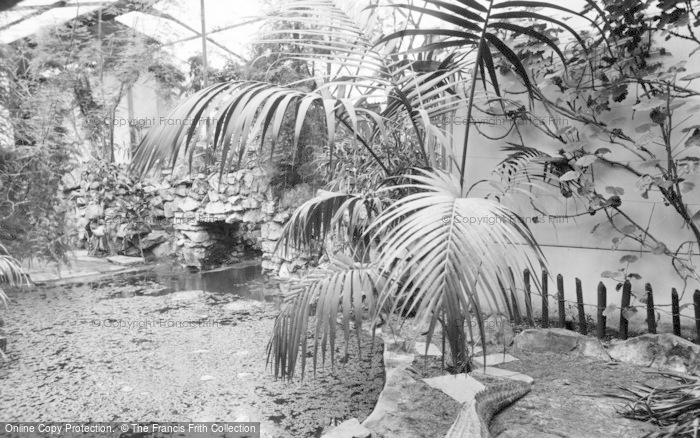 Photo of Chester Zoo, Tropical House c.1955
