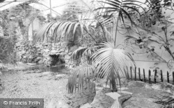 Chester Zoo, Tropical House c.1955