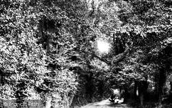 Chichester, Love Lane 1898