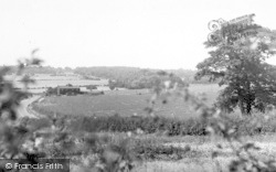 General View Of Hainault Forest c.1955, Chigwell Row