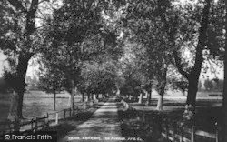 Chilham, The Avenue 1903