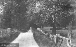 Chilham, The Avenue 1925