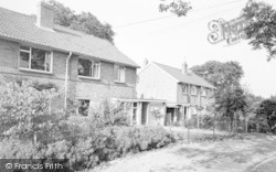 The Walnuts c.1965, Chilton Polden