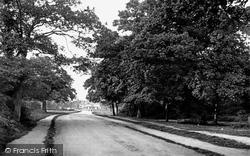 Chingford, Bury Road 1907