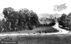 Station Road 1903, Chipping Sodbury