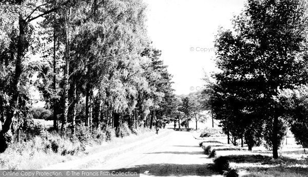 Photo of Chipstead, Holly Lane c.1955