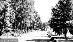 Chipstead, Holly Lane c.1955