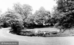 Chipstead, The Pond c.1960