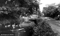 Swans On The Canal 1955, Chirk