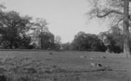 Chiselhampton photo