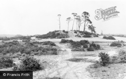 Common And The Clump c.1960, Chobham