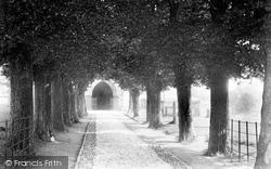The Churchyard, Elm Avenue 1906, Christchurch