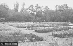 Churchtown, Botanic Gardens c.1950