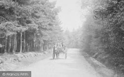 Churt, Cart On Road To Pride Of The Valley 1906