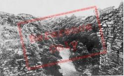 The River Teifi c.1955, Cilgerran