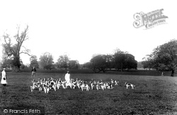 Cirencester, Cirencester Park, Lord Bathurst's Hounds 1898