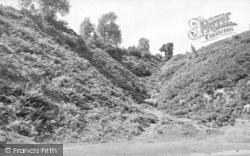 The Fairy Glen c.1955, Clee Hill