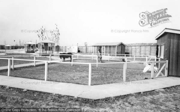 Photo of Cleethorpes Zoo, Pets Corner c.1965