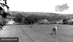Cleeve Hill, Hoeing c.1960