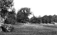 Clifton Hampden, From The Meadows 1890