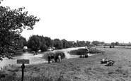 Clifton Hampden, The Meadows c.1960