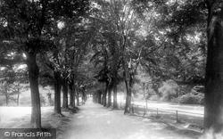 Clifton, Promenade 1896