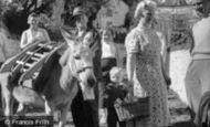 Clovelly, Donkey Stealing Sugar c1960