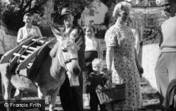 Clovelly, Donkey Stealing Sugar c.1960