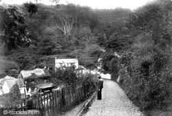 Clovelly, Lane To Hobby Drive 1908