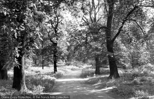 Photo of Clumber Park, The Dukeries c.1955