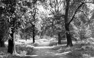 Example photo of Clumber Park (Country Park)