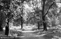 The Dukeries c.1955, Clumber Park