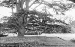 Cobham, Hall, The Gardens c.1960