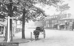 Cobham, Horse And Trap 1903