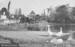 Cobham, The Mill c.1955