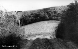 Cocking, The Downs c.1960