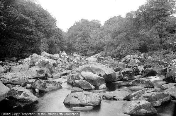 Coed-y-Brenin Forest photo