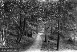 Footpath To Holmwood Station 1906, Coldharbour