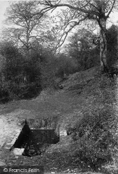 Mag's Well 1906, Coldharbour