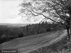Coldharbour, Ranmore View 1924