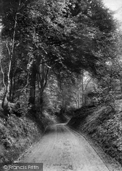 Road To Dorking 1906, Coldharbour