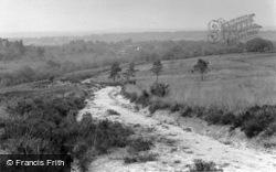 View Near Wren's Warren Camp c.1955, Colemans Hatch