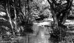 River Churn c.1960, Colesbourne
