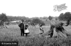 Coltishall, Harvest Games 1902