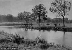 Coltishall, On The Banks Of The Bure 1902