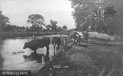 Coltishall, On The Bure 1902