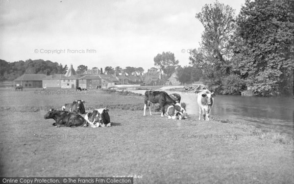 Photo of Coltishall, The River Bure 1902