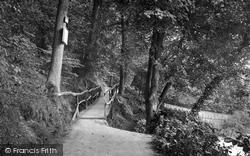 Bridge In Pwll-Y-Crochan Woods 1921, Colwyn Bay